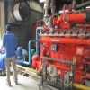 Scalling & Cleaning Genset